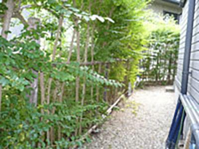 樹木からフェンス工事